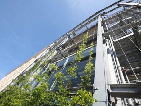 Powerhouse Eindhoven met spankabels langs de gevel voor groene gevel - Carl Stahl Green Walls